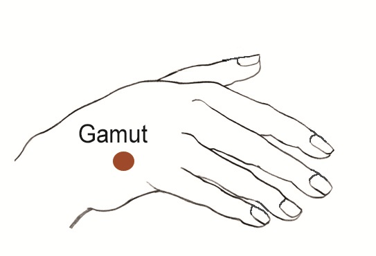 EFT Tapping 9 gamut point diagram
